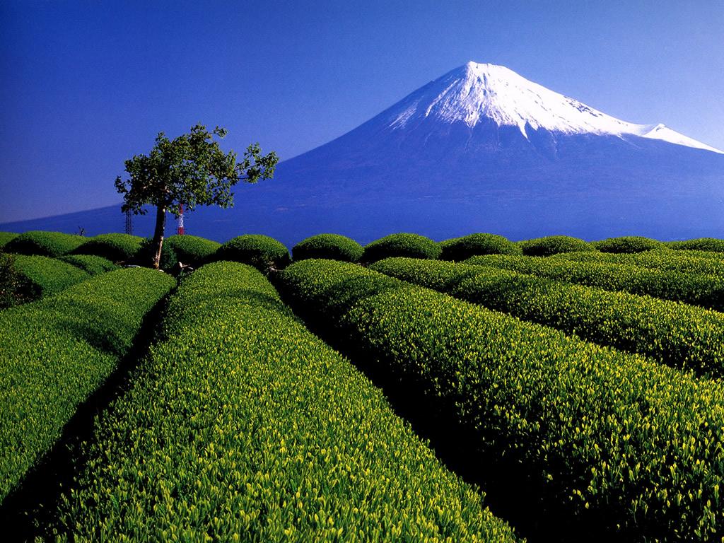 1024x768 日本らしく 美しい壁紙 Beautiful Wallpaper Japan