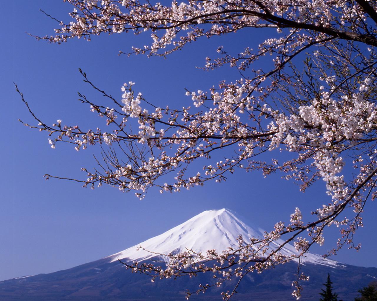 富士山の画像 p1_9