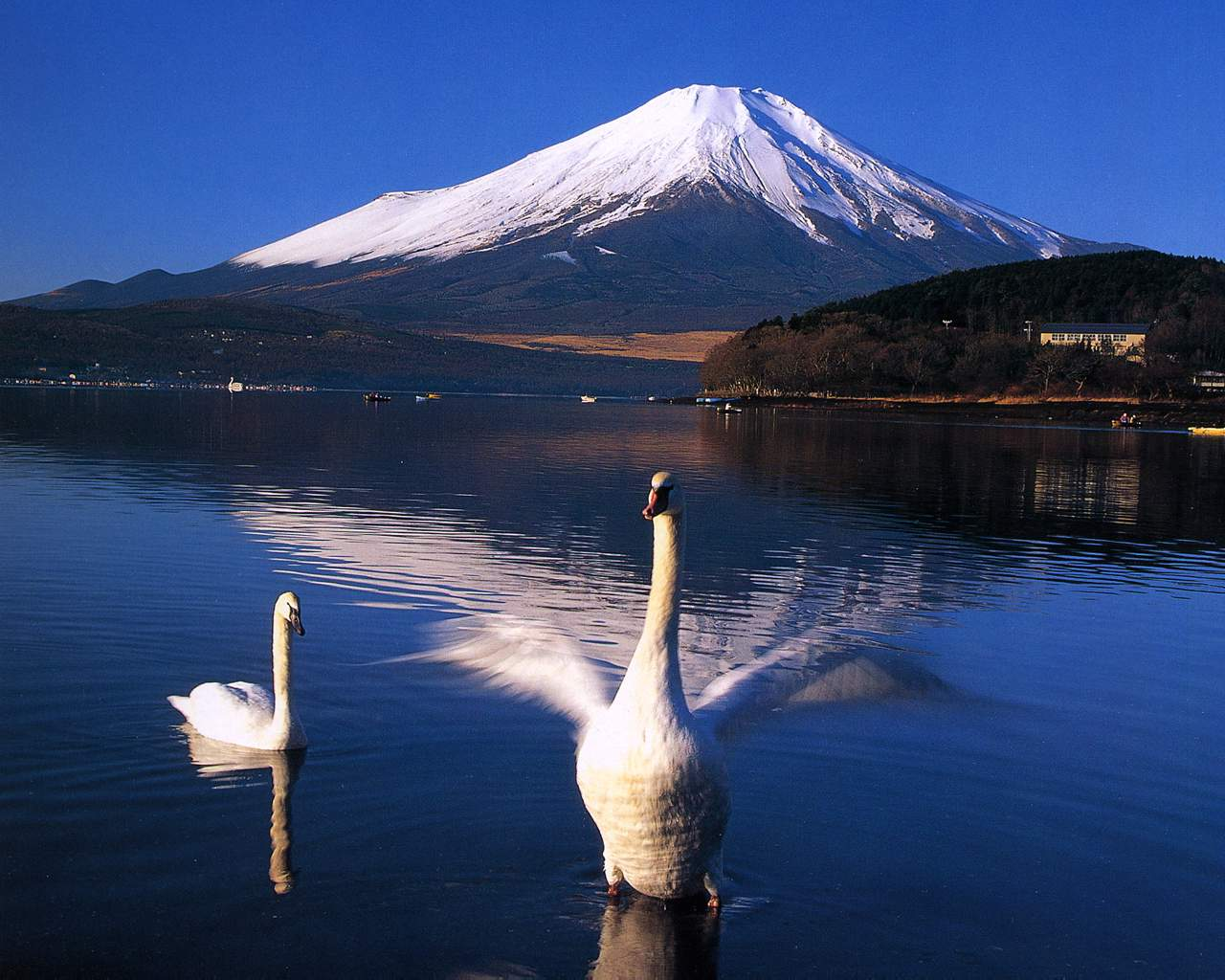 富士山の壁紙 富士の響 富士山写真 壁紙